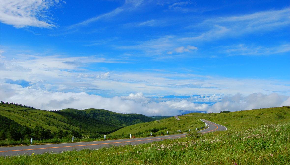 新緑の高原、<br>ビーナスラインドライブ! 絵画のような絶景を楽しめるおススメコースを特集します。