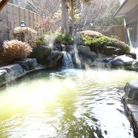 ホテルハ峯苑 鹿の湯