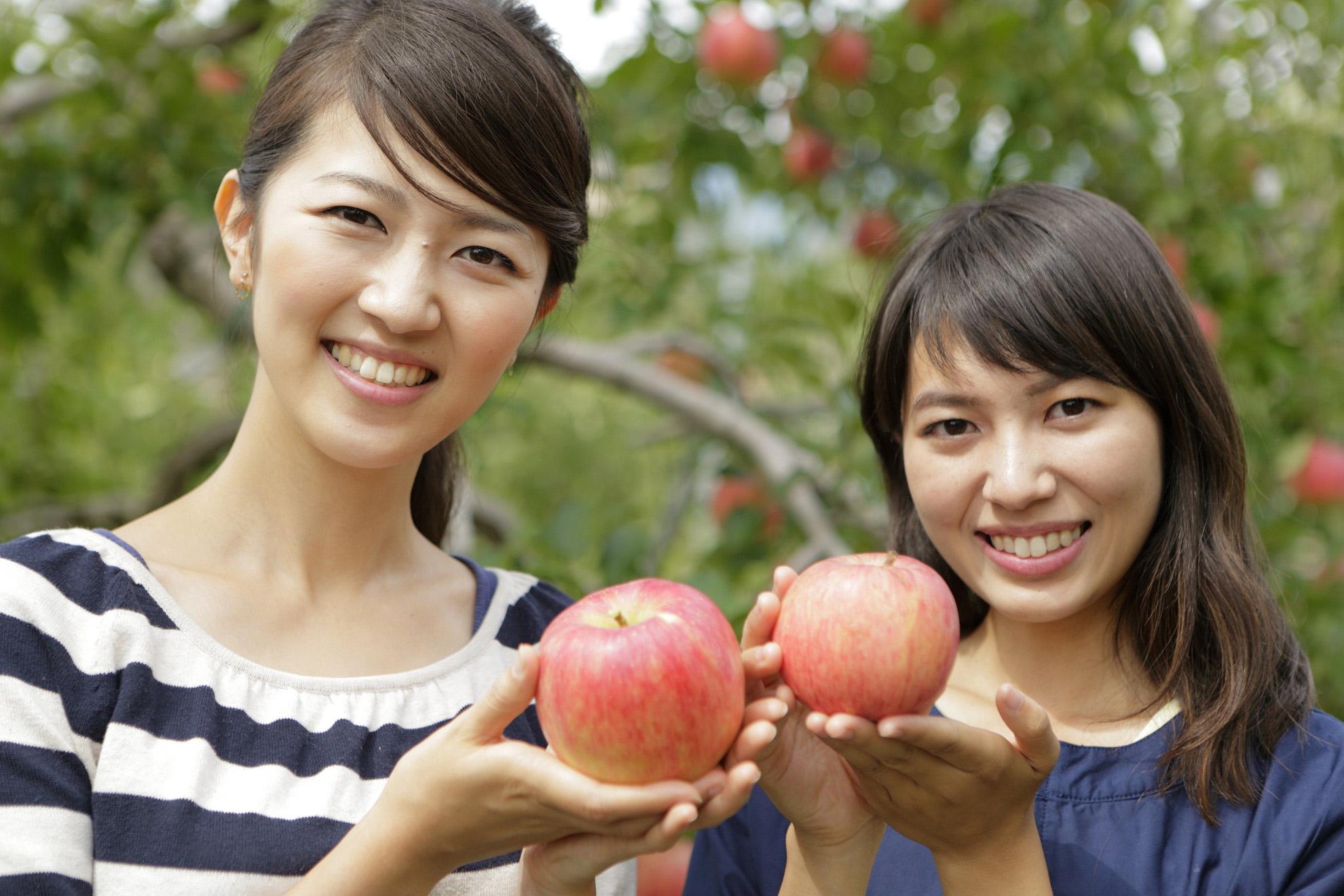 りんご狩り体験【下諏訪町】