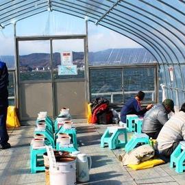 わかさぎ釣り(諏訪湖観光汽船)